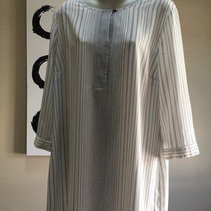 Ann Taylor Shirt Dress